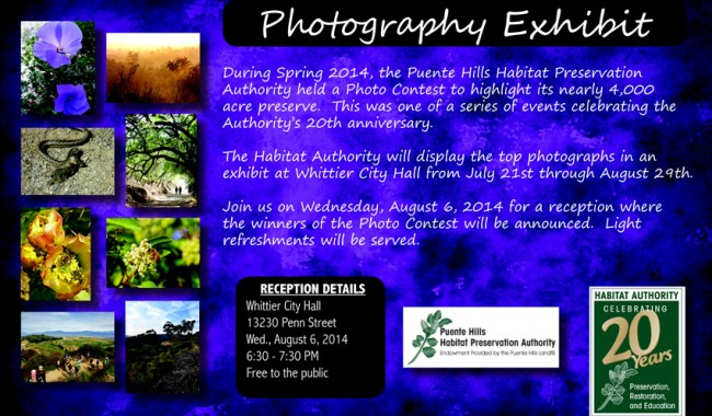 Photo Contest- Celebrating 20 Years